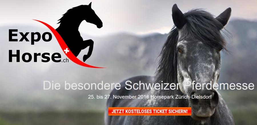 ExpoHorse Pferdemesse, Ausstellung