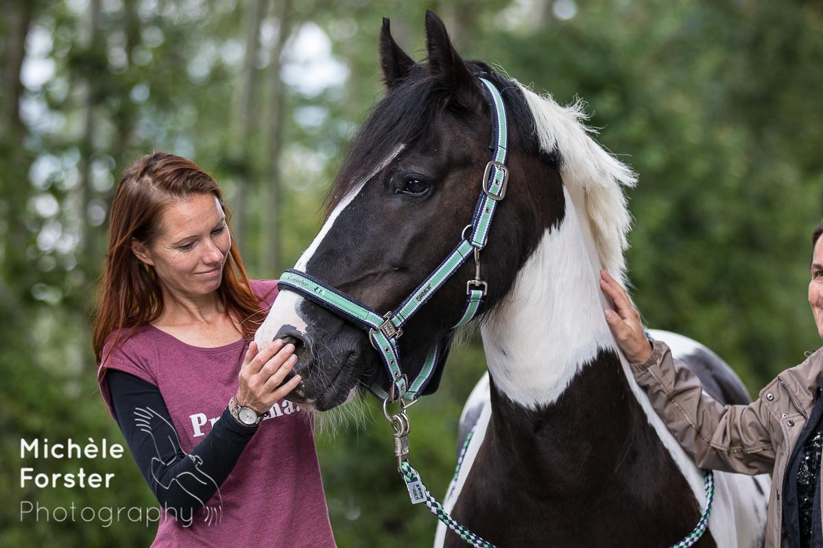 Sandra Schneider Problem Pferde tour